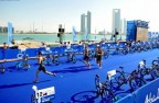 Les résultats du week-end : World Triathlon Series (WTS) d'Abu Dhabi